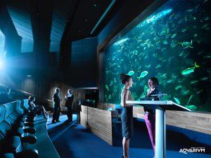 horarios y calendario acuario de donosti