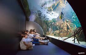 entradas acuario donosti